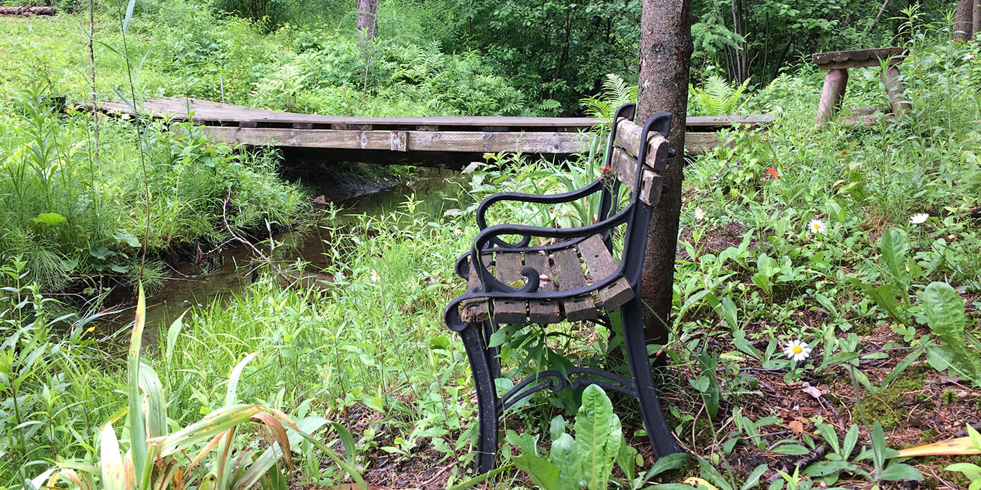 Un banc en forêt